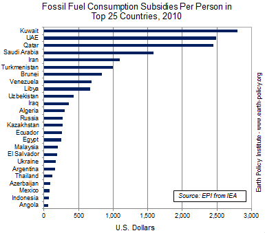 Fossil Fuel Consumption Subsidies Per Person in Top 25 Countries, 2010