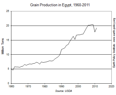 Grain Production in Egypt, 1960-2011