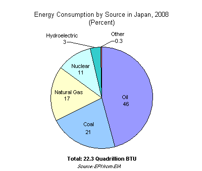 Energy Consumption by Source in Japan, 2008